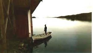 vissen onder brug